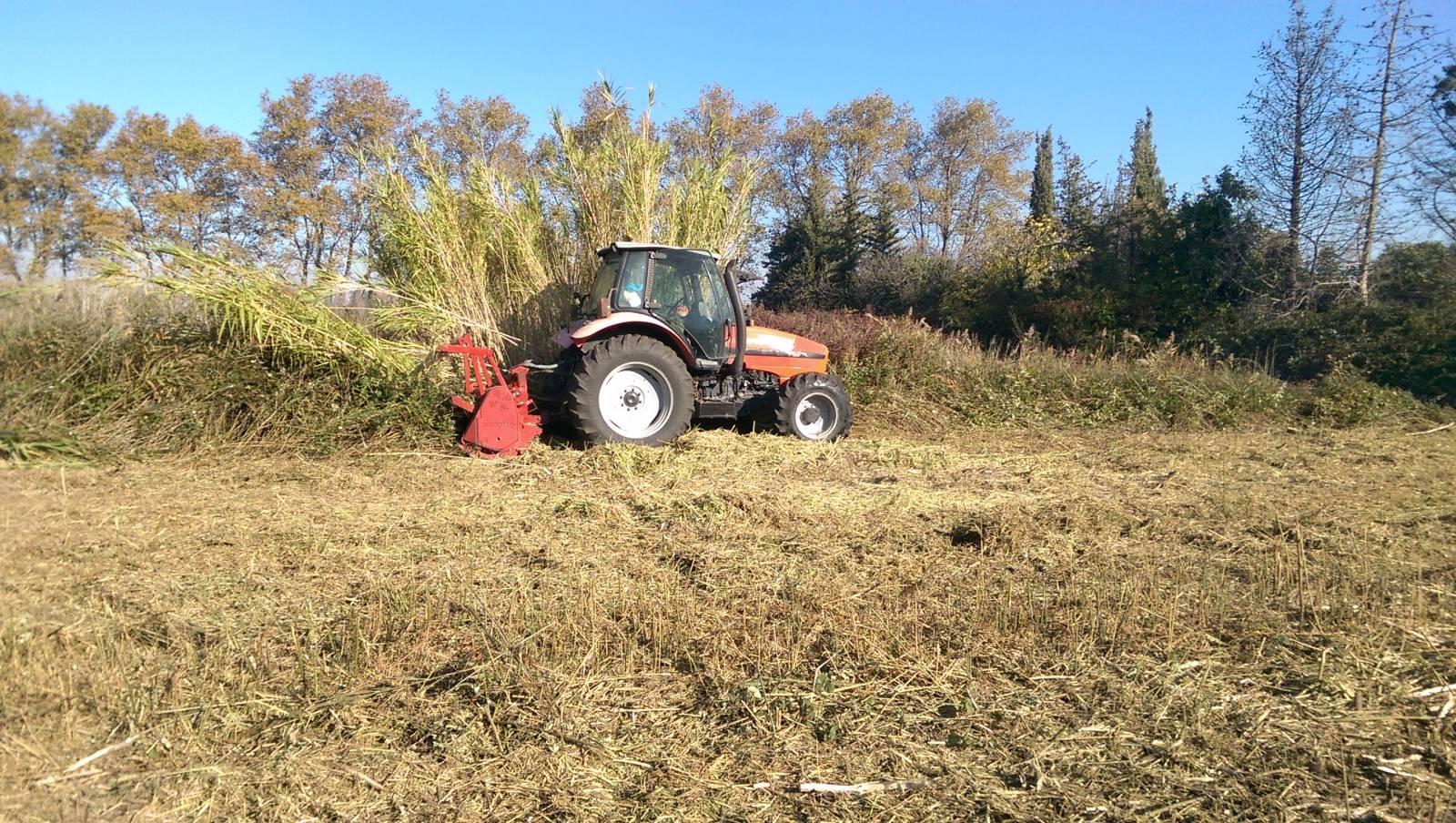 D broussaillage et broyage de terrain agricole elagage for Container sur terrain agricole